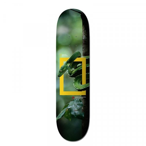 ELEMENT DECK NAT GEO JULIAN SNAKE 8.25