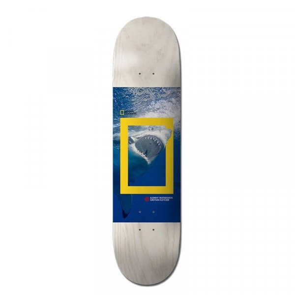 ELEMENT DECK NAT GEO GREYSON SHARK 8.5